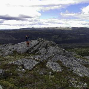 Ein gut som står på ein stein på ein fjelltopp