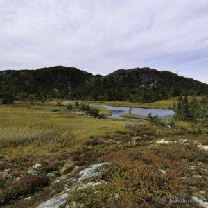 Lite fjellvatn med fjell i bakgrunnen