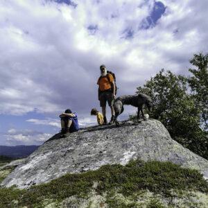 Bilete av ein familie med hund på fjelltur oppstilt på ein stein