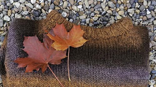 Brun strikkegenser pynta med raude blad ligg på elvesingel