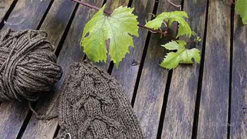 Brun vott og garnnøste ligg på eit bord med drueblad i bakgrunnen