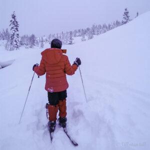 Barn på ski som går vekk frå fotografen