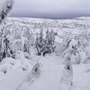 Skituppar og utsikt over eit snødekt landskap