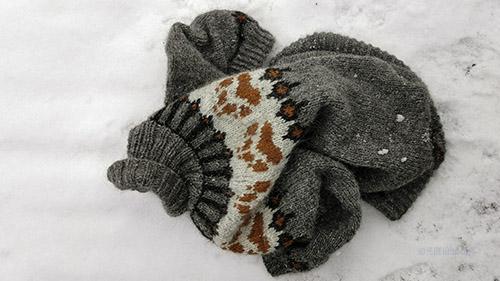 Grå Villmarksgenseren ligg i ein haug på snøen