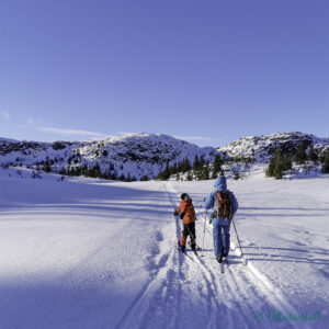 To på skitur i fjellheimen