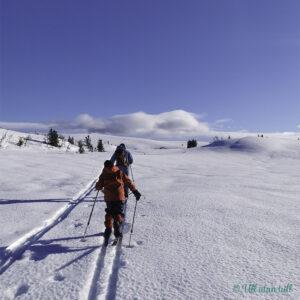 To stk på skitur innover fjellet i sol