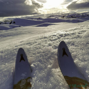 Ski, snø og sol