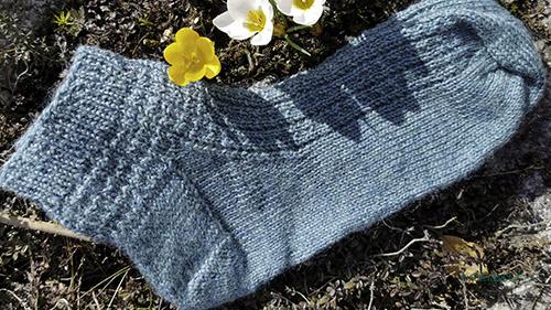 Blågrøn sokk ligg på bakken med kvite og gule krokusar
