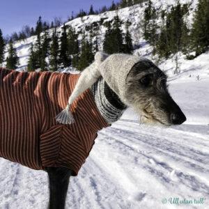 Nanna står i snøen med raudstripete trøye og pointy greyhound hoodie