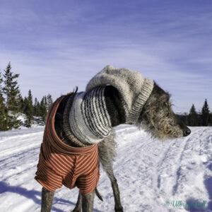 Nanna ser vekk frå kamera og står med pointy greyhound hoodie